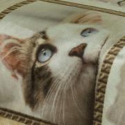 Cobertor Avulso Casal Flanelado com Estampa Digital 280 gramas/m² - Cat Faces - Dui Design