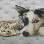 Cobertor Avulso Solteiro Flanelado com Estampa Digital - Dog e Cat - Dui Design
