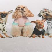 Cobertor Avulso King Flanelado com Estampa Digital - Fancy Pets - Dui Design