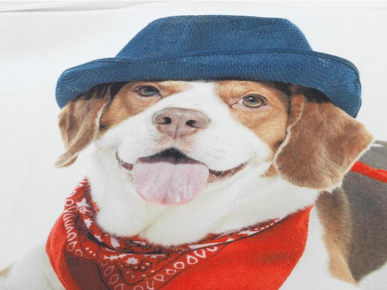 Cobertor Avulso King Flanelado com Estampa Digital - Puppy - Dui Design