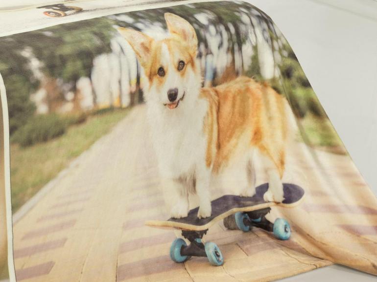 Cobertor Avulso Solteiro Flanelado com Estampa Digital 300 gramas/m² - Skate Dog - Dui Design