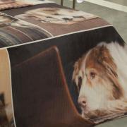Cobertor Avulso Solteiro Flanelado com Estampa Digital 300 gramas/m² - Student Dog - Dui Design