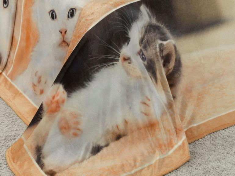 Cobertor Avulso Solteiro Flanelado com Estampa Digital 300 gramas/m² - Sweet Cats - Dui Design