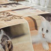 Cobertor Avulso Casal Flanelado com Estampa Digital 300 gramas/m² - Sweet Cats - Dui Design